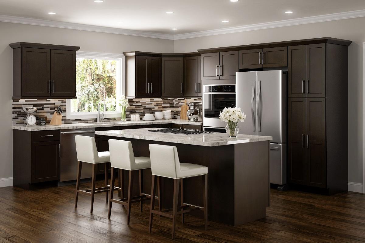 Espresso Raised Panel RTA Kitchen Cabinets
